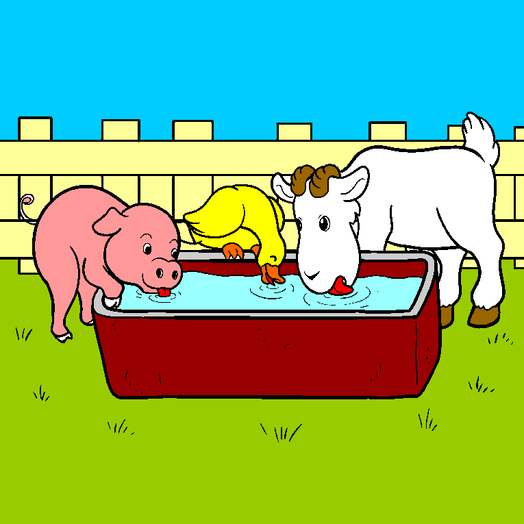 A pig, one go and one cow drinks water together