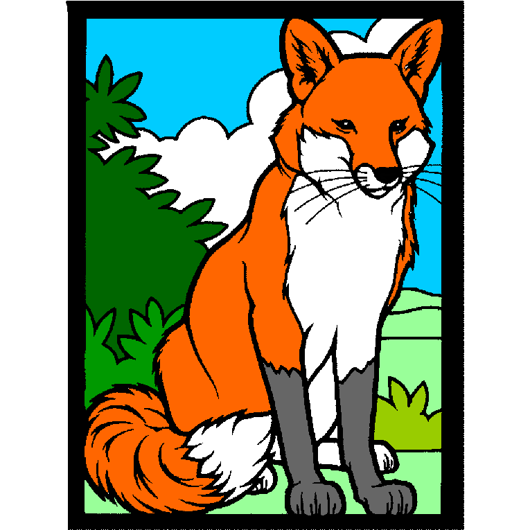 Foxes 4