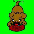 bingo the little dog - the coppy cat, 10
