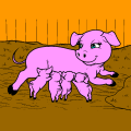 mommy with 4 baby pigs - Amimal lover, 12