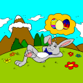 rabbit - owais, 8