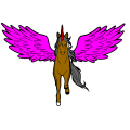 unicorn - tayla, 12