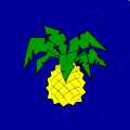PINEAPPLE!!! - Joy, 12