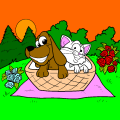 Dog and cat picnic - Jaide, 12