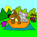 cat and dog - Marci, 10