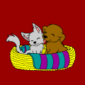 Cat and Dog in Basket - Julie, 36