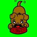 Bingo The Hunger Puppyy!!!! - Regan, 8