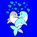 Dolphins in love - Meg, 14